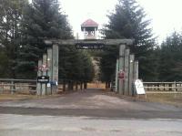 Norwegianwood ranch