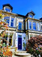 Wynnstay House (Bed & Breakfast)