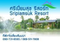 Sripiamsuk resort, Resorts - Ban Bang Phang