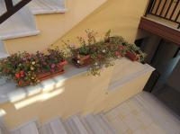 Malamatenia House, Apartments - Sarti