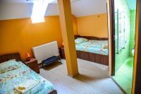 Pensiunea Andrei, Guest houses - Copăcelu