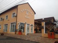 Pensiunea Sergiu & Geanina, Guest houses - Arad