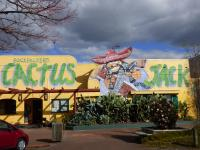 Cactus Jacks Backpackers, Хостелы - Роторуа