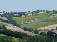 Colline Di Bartolo, Dovolenkové domy - Corinaldo