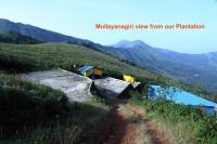 Kanasu's Homestay, Priváty - Attigundi