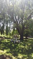 Treadridge, Prázdninové domy - Drakensberg Garden