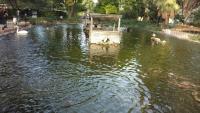 Cardona Flat, Ferienwohnungen - St Paul's Bay