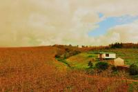 Sanctum Cottages, Agriturismi - Grabouw