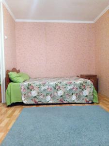 Apartment Bolshaya Krasnaya, Apartments  Kazan - big - 30