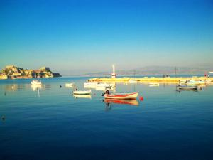 Serenity, Holiday homes  Corfu Town - big - 23