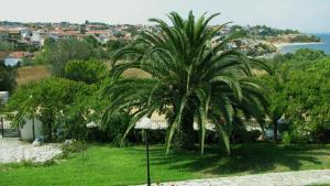 Villa Madeleine, Appartamenti  Nea Fokea - big - 35