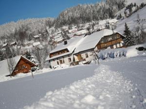 Haus Tannenhof, Pensionen  Ibach - big - 1
