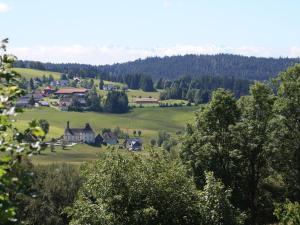 Haus Tannenhof, Pensionen  Ibach - big - 24