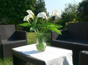 Il giardino sul porto - AbcAlberghi.com