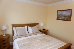 Tower View B&B, Bed and Breakfasts  Dingle - big - 3