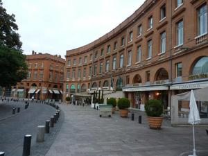 La Marquise Roosevelt, Apartments  Toulouse - big - 27