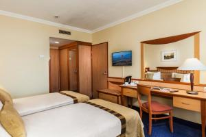 Superior Plus Room with Balcony and Danube view
