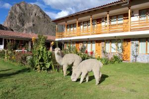 Hotel Tierra Inka Sacred Valley, Szállodák  Ollantaytambo - big - 52