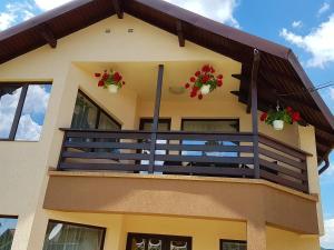 Casa David Comarnic, Vily  Comarnic - big - 28
