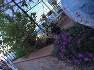 A-HOTEL.com - B&B La Terrazza Sul Mare Taormina, Bed & Breakfast ...