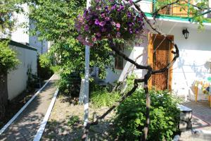 Guest house on Grinchienko