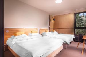 Hotel Golf Depandance, Hotely  Praha - big - 12