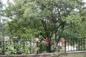 Dilijan Garden House, Vily  Dilijan - big - 9