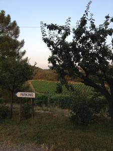 Agriturismo Fattoria Di Gratena, Farmházak  Pieve a Maiano - big - 17