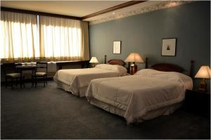 Hotel Excelsior, Отели  Асунсьон - big - 20