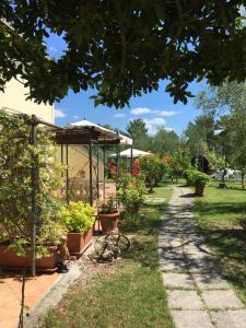 Agriturismo Podere Sottogello, Farmházak  San Giovanni a Corazzano  - big - 17