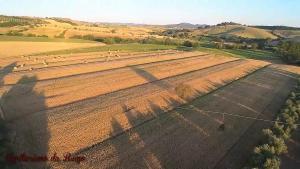 Agriturismo da Remo, Bauernhöfe  Magliano in Toscana - big - 11