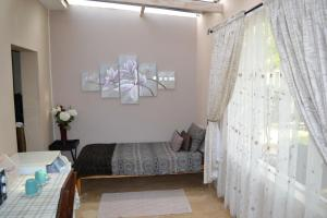 Travel North Guesthouse, Гостевые дома  Tsumeb - big - 11