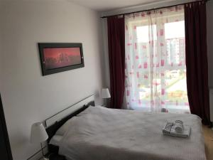 Jolly Apartment, Apartments  Braşov - big - 8
