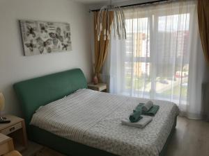 Jolly Apartment, Apartments  Braşov - big - 7