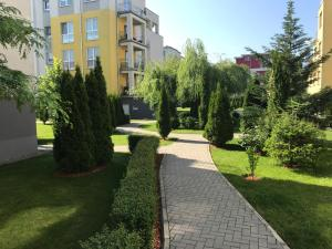 Jolly Apartment, Apartments  Braşov - big - 3