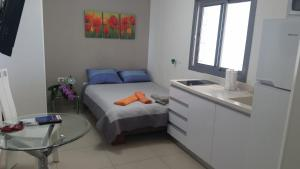 Kfar Saba Studio Apartment, Ferienwohnungen  Kefar Sava - big - 22