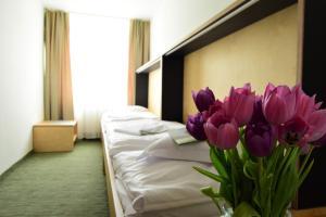 Hotel Diery, Hotel  Terchová - big - 10