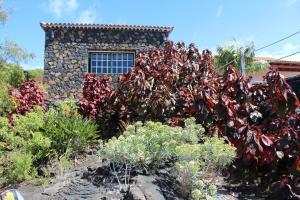 Casa La Majada, Vidiecke domy  Los Llanos de Aridane - big - 46