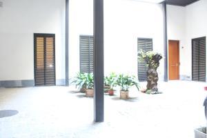 El Corral del Rey a 1min de la Catedral, Appartamenti  Siviglia - big - 5