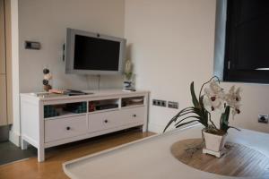 Luxury loft Seville, Apartmanok  Sevilla - big - 27