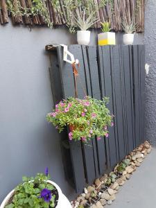 Yellow Door, Apartmanok  Bloemfontein - big - 11
