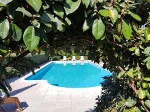 Villa Oliva verde - AbcAlberghi.com