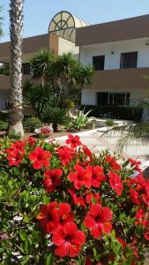 Alcor - Road to Sicily, Apartmány  Punta Braccetto - big - 27