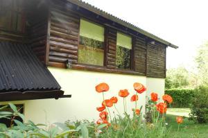 Hosteria Belvedere, Hostince  Villa La Angostura - big - 15