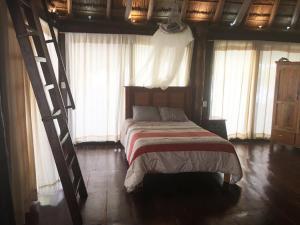 Rhincodon Typus, Hotels  Holbox Island - big - 32