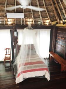 Rhincodon Typus, Hotels  Holbox Island - big - 29