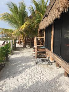 Rhincodon Typus, Hotels  Holbox Island - big - 27