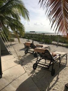 Rhincodon Typus, Hotels  Holbox Island - big - 24