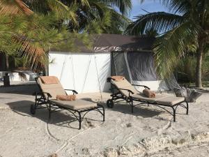 Rhincodon Typus, Hotels  Holbox Island - big - 2