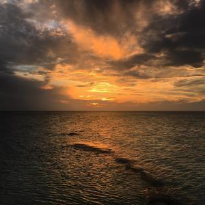 Rhincodon Typus, Hotels  Holbox Island - big - 58